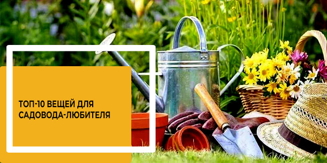 ТОП-10 вещей для садовода-любителя