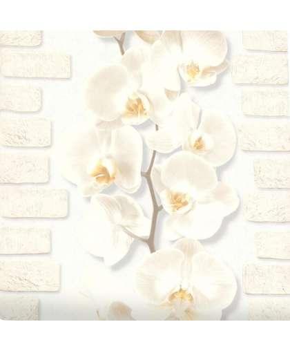 Обои Палитра 10107-11 Орхидея рисунок