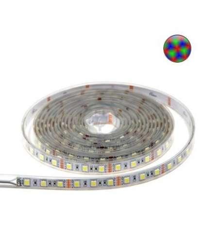 Лента светодиодная 14.4 Вт/м SMD5050 (60 диодов на метр) открытая RGB, TDM