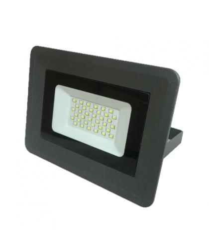 Прожектор светодиодный 30W 6500К IP65 13013, Truenergy