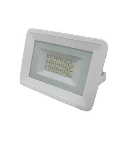 Прожектор светодиодный TruEnergy 13113 30W 6500К белый